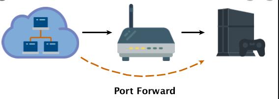 Forwarding the Ports